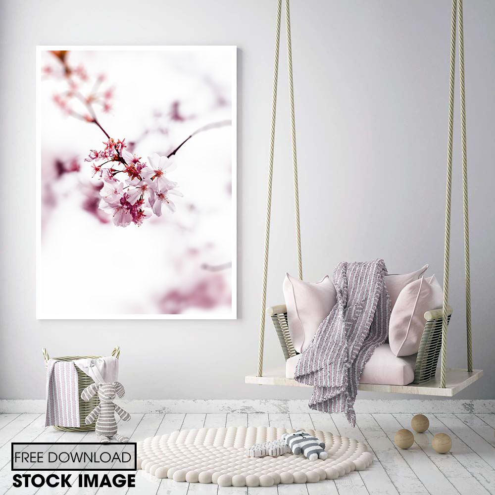 hoa anh đào tông màu hồng trắng